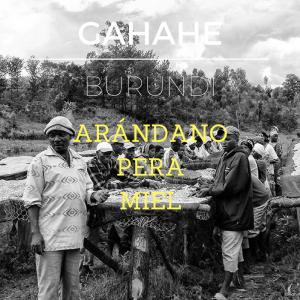GAHAHE